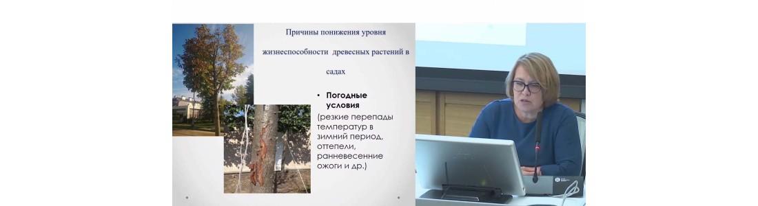 Елена Суркова — выступления в Зарядье (октябрь 2019 г) часть 2