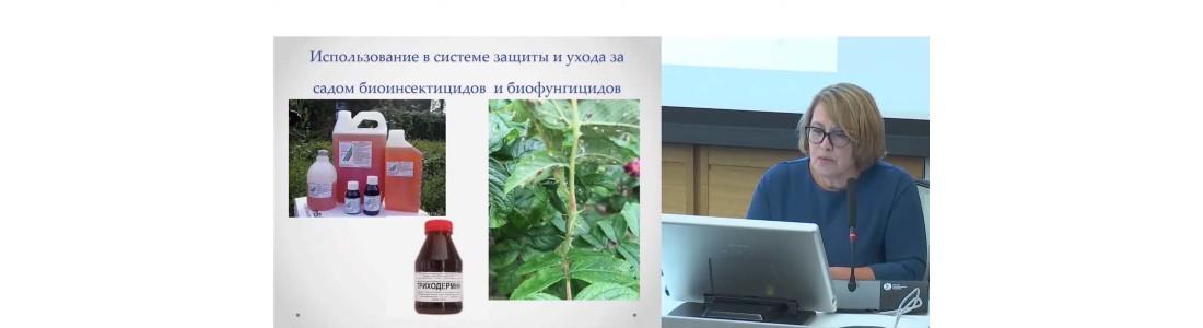 Елена Суркова — выступления в Зарядье (октябрь 2019 г) часть 6